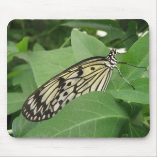 Paper Kite Butterfly Macro Mousepad