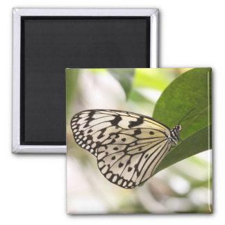 Paper Kite Square Magnet