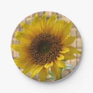 Paper plates Sunflowers