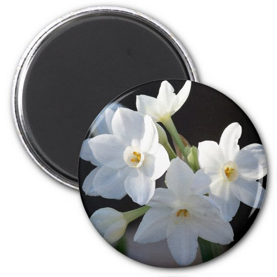 Paper Whites Flowers Magnet