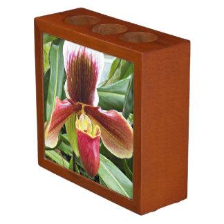 Paphiopedilum Orchid Floral Desk Organiser