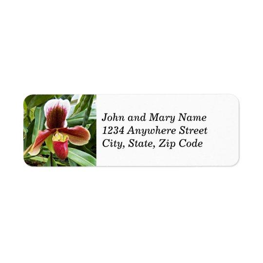 Paphiopedilum Orchid Floral Return Address Labels