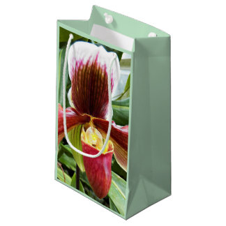 Paphiopedilum Orchid Floral Small Gift Bag