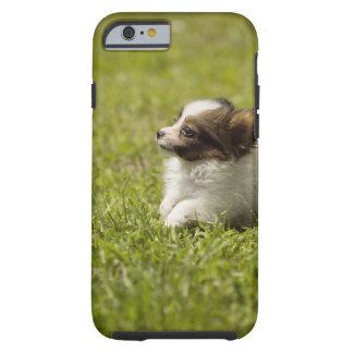 Papillon 2 tough iPhone 6 case