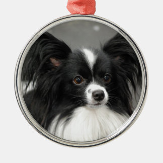 Papillon Dog  Ornament