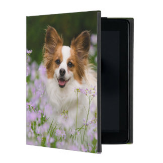 Papillon Dog Romantic Portrait protective Hardcase iPad Folio Cover