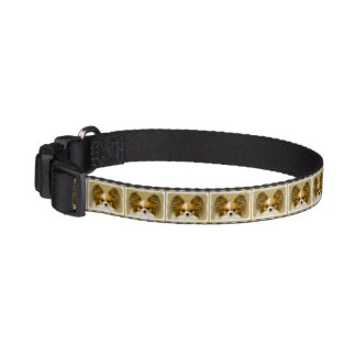 Papillon (Hound Tri Color) Pet Collar