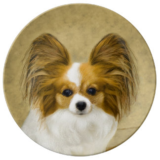 Papillon (Hound Tri Color) Plate