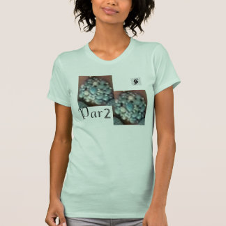 Par2 by JG Women's American Apparel Fine Jersey T Shirt