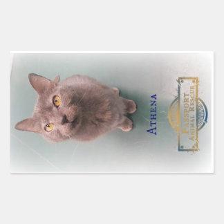 PAR Athena Sticker