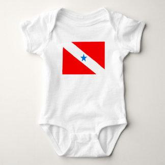 Para Brazil flag province region symbol Baby Bodysuit