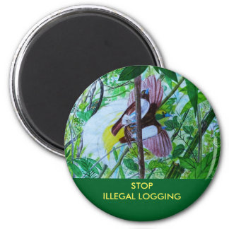 Paradise Birds in the Rainforest 6 Cm Round Magnet