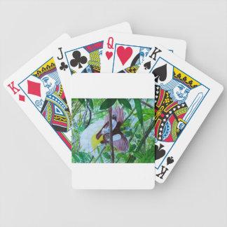 Paradise Birds in Watercolor Poker Deck