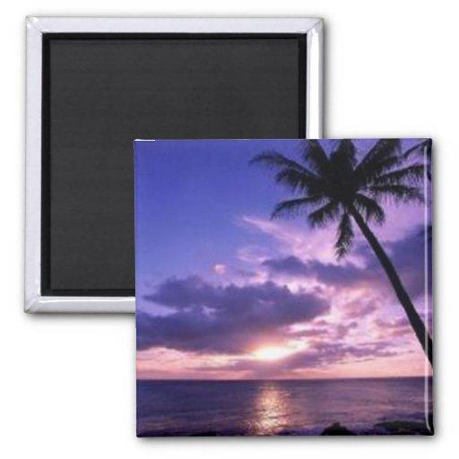 Paradise Island Magnet
