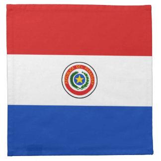 Paraguay Flag Napkin