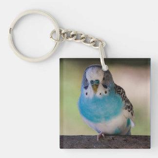 Parakeet Bird Key Chain, Single Sided Key Ring