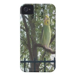 Parakeet iPhone 4 Case