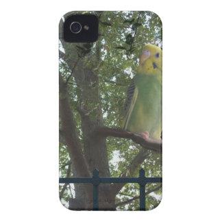 Parakeet iPhone 4 Covers