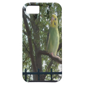 Parakeet iPhone 5 Cases