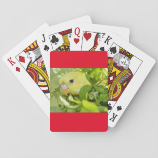 Parakeet Peeks Playing Cards, Standard Index faces Playing Cards