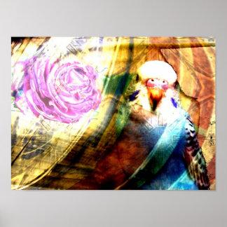 Parakeet rose collage- Print