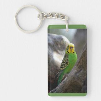 Parakeet Stands Tall Key Chain