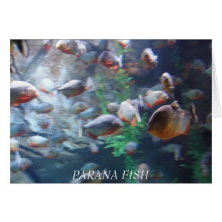 Parana Card