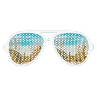 Parana River, San Nicolas, Argentina Aviator Sunglasses