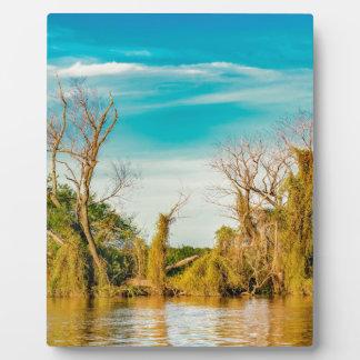 Parana River, San Nicolas, Argentina Plaque