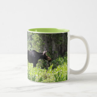 Parent and child magnetic cup of moose