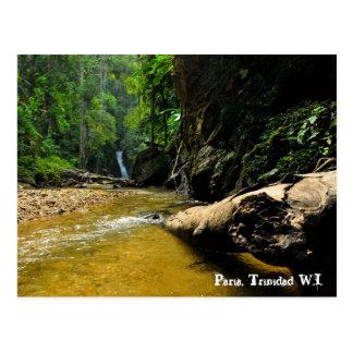 Paria River and Waterfall, Trinidad W.I. Postcard