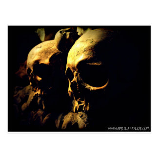 Paris Catacombs by April A Taylor Postcard