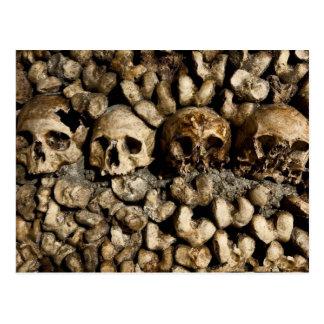 Paris Catacombs Skulls and Bones Postcard