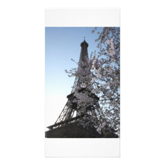 Paris Cherry Blossoms Photo Card Template