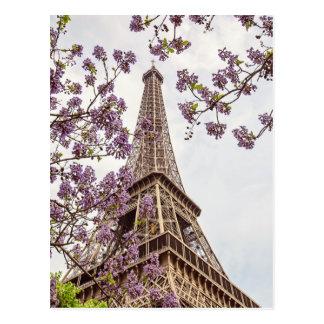Paris Eiffel Tower in Springtime Photo Postcard