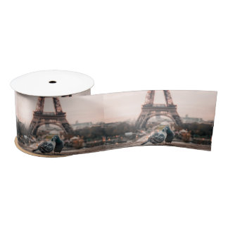 Paris, France ribbon Satin Ribbon