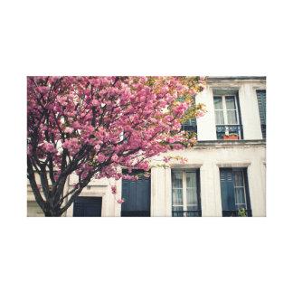 Parisian Pink Blossoms 2 Canvas Prints