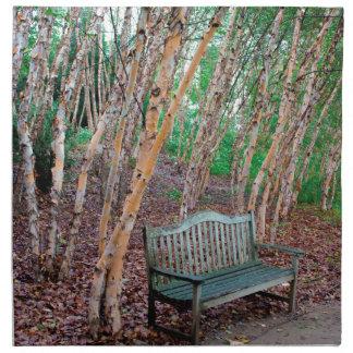 Park Bench 1 Napkin