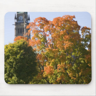 Park beside the Parliment Building in Ottawa, Mousepads