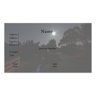 Park Entrance at Night Business Card