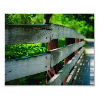 Park Fence Photograph