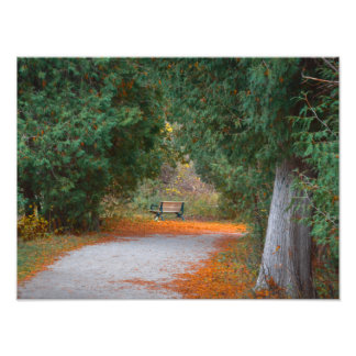 Park in fall photo