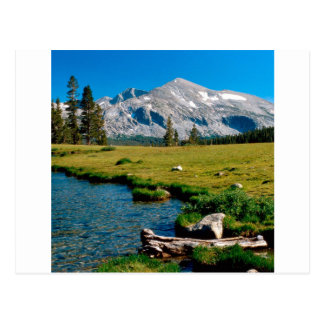 Park Mammoth Peak Yosemite California Postcard