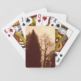 Park Trees Standard Cards