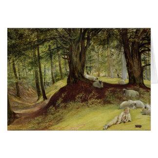Parkhurst Woods, Abinger, Surrey Card