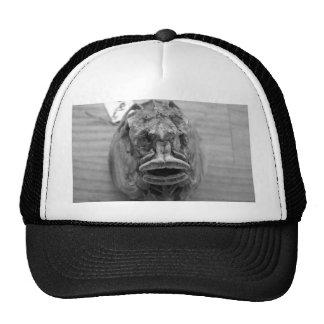 Parore Fish Skull Mesh Hats