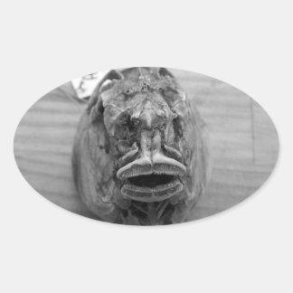Parore Fish Skull Oval Sticker