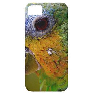 Parrot Amazon Animals Bird Green Exotic Bird Case For The iPhone 5