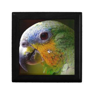 Parrot Amazon Animals Bird Green Exotic Bird Gift Box