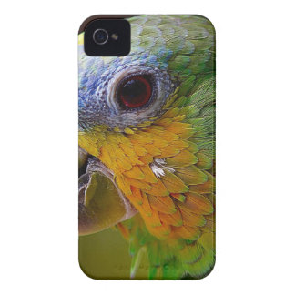 Parrot Amazon Animals Bird Green Exotic Bird iPhone 4 Cover